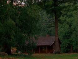 Miškai seni